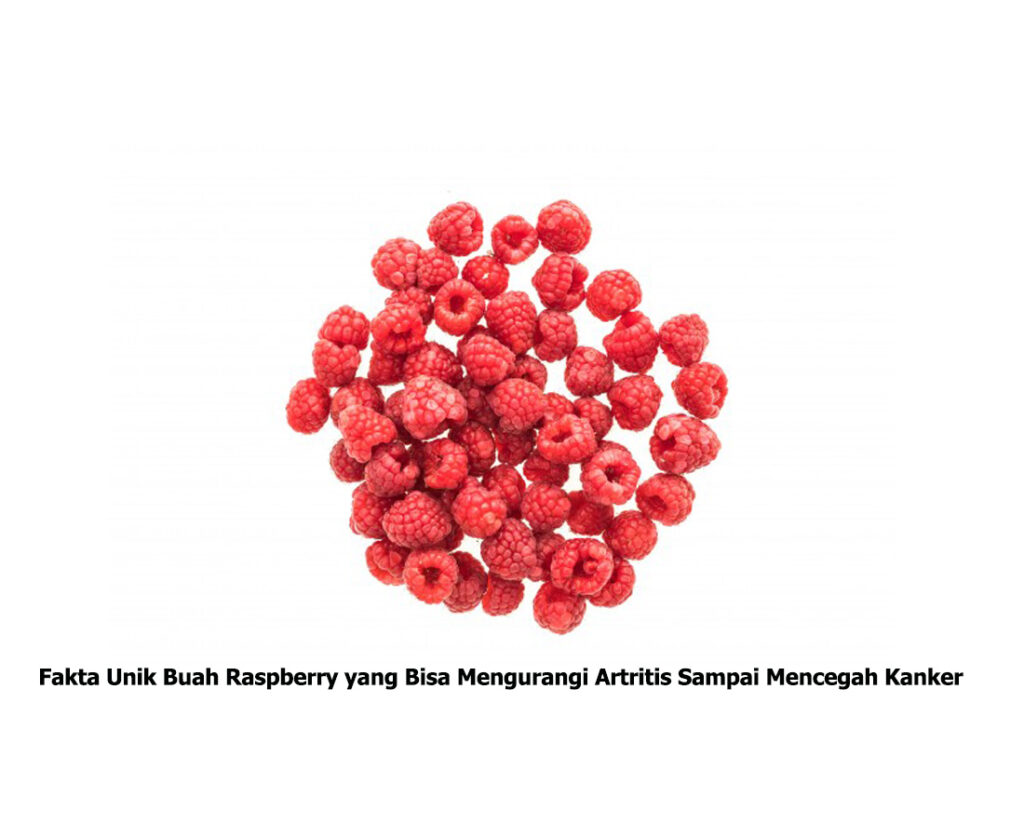 Fakta Unik Buah Raspberry yang Bisa Mengurangi Artritis Sampai Mencegah Kanker smartpower media berita